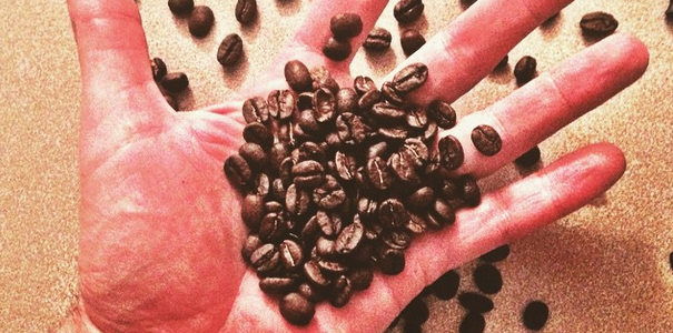 Beachcomber Coffee Review